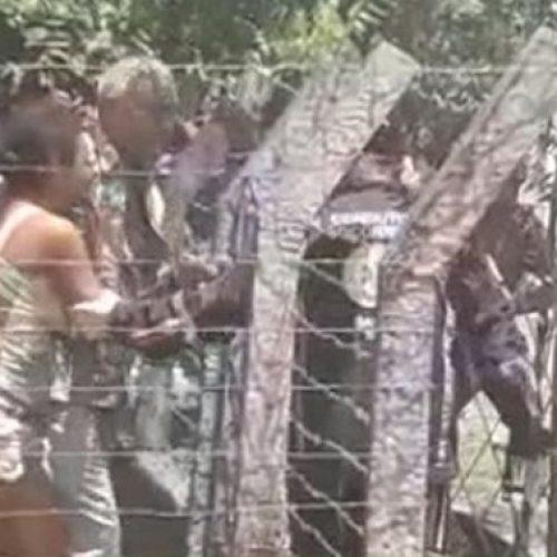 Mãe esfaqueia os próprios filhos dentro de casa no interior do Piauí