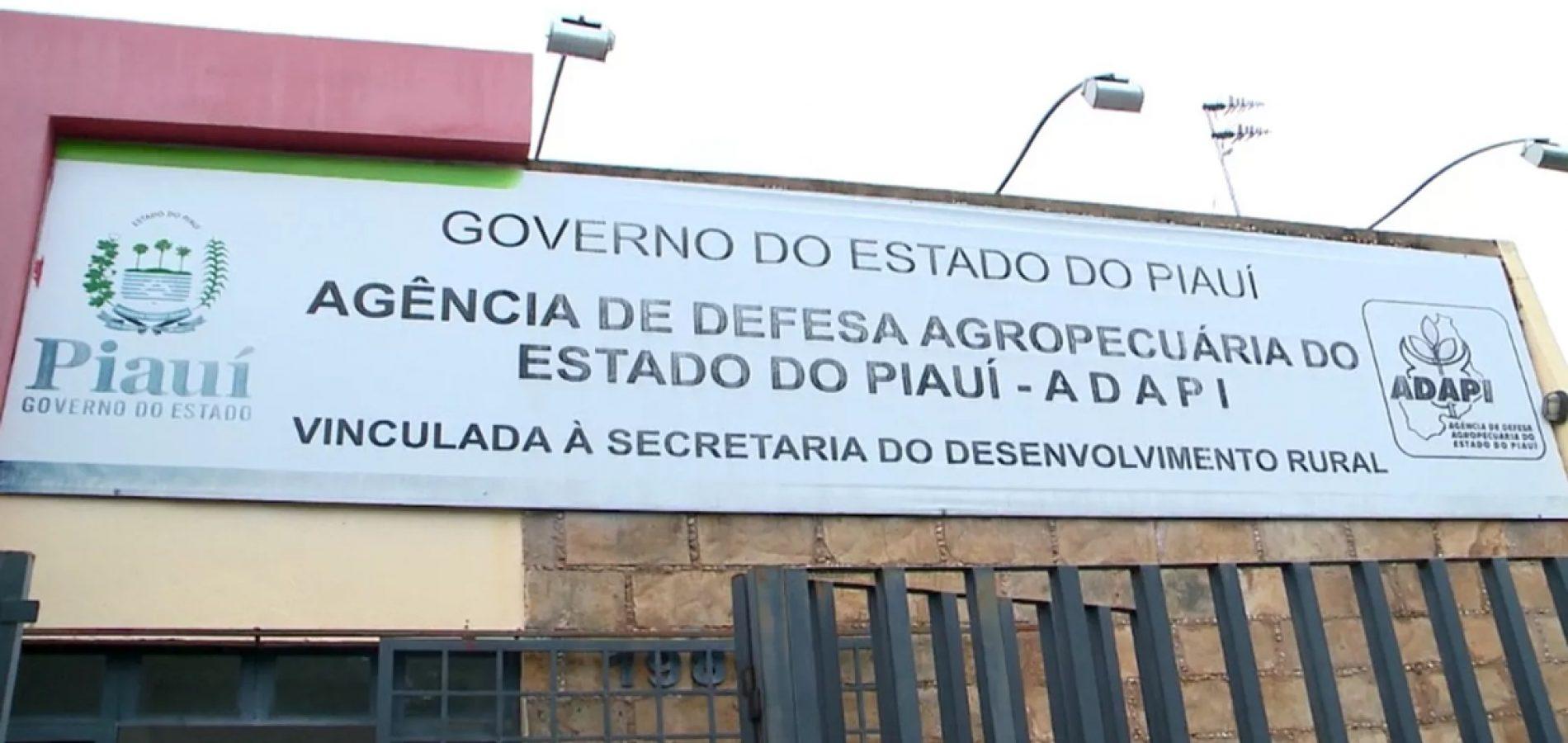 Adapi flagra carnes roídas por ratos em estabelecimento no Piauí