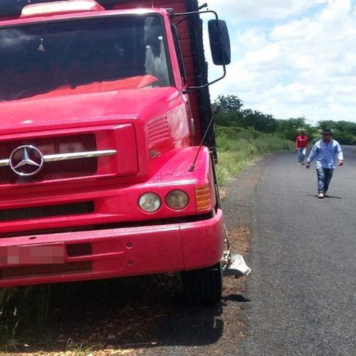PAULISTANA | Mecânico morre após colidir moto em caminhão