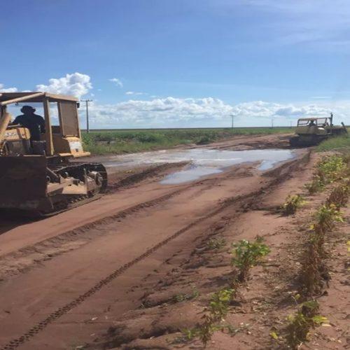 Produtores rurais do Piauí iniciam obras na rodovia Transcerrados por conta própria