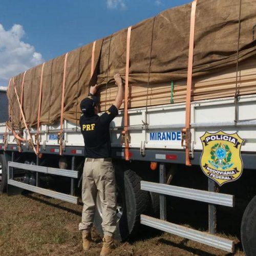 Caminhão é apreendido com 15 toneladas de madeira ilegal na BR 343