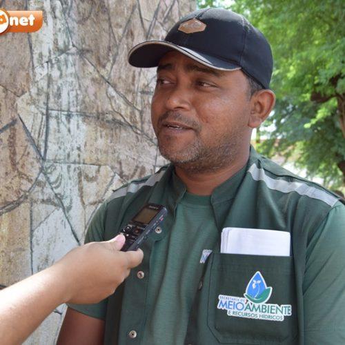 Semam e PRF apreendem mais de 50 animais em Picos e região