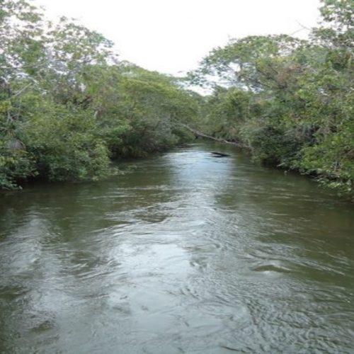 Corpo de homem é achado em decomposição após afogamento em rio no Piauí