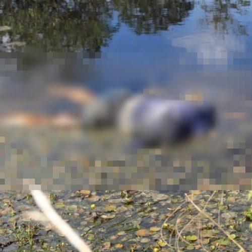 Corpo de mulher desaparecida é encontrado na zona rural de Acauã