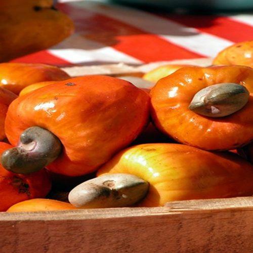 Caju é uma fruta grande aliada da saúde e boa forma