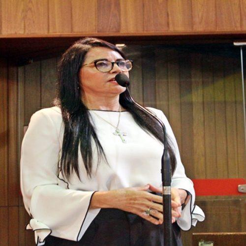 Deputada Teresa Britto cobra recuperação de rodovias estaduais
