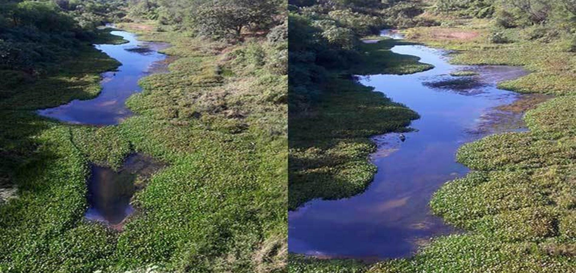 Rio no Piauí corre o risco de secar por causa da baixa vazão de barragem
