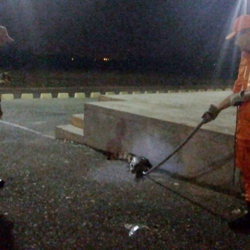 Bombeiros capturam jacaré em estacionamento de shopping de Picos