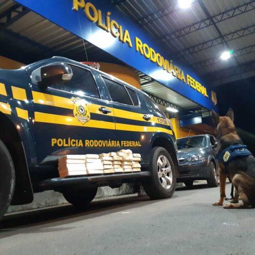 PRF apreende droga avaliada em mais de R$ 1 milhão no município de Floriano