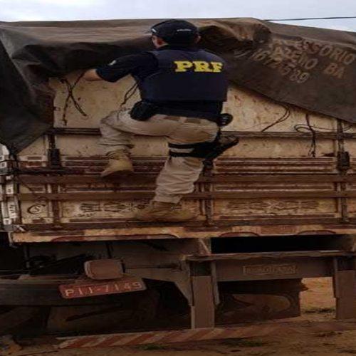 PRF e SEFAZ/PI apreendem madeira sem nota fiscal e sem licença ambiental na BR-020