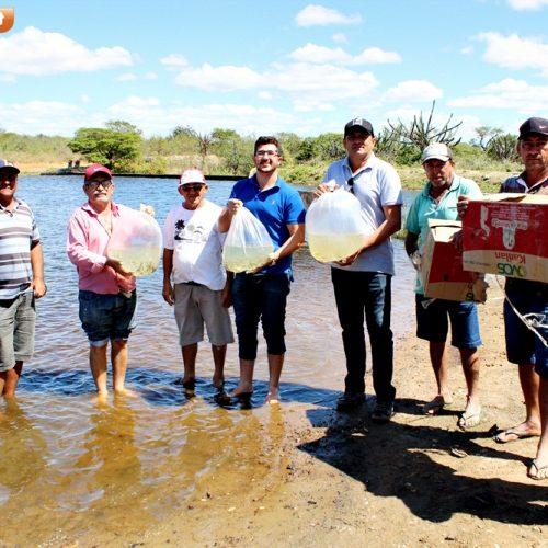 Em Alegrete, seis mil alevinos são distribuídos na Barragem de Pocinhos; ação foi viabilizada pelo vereador local