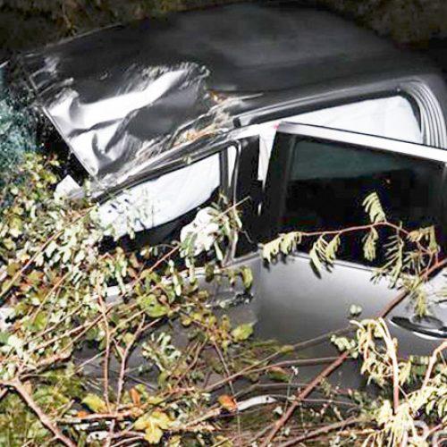 Empresário de Valença morre em acidente de carro na PI-120