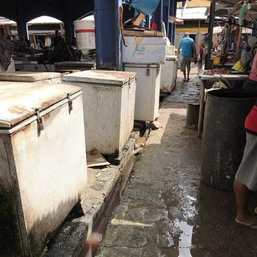 Durante vistoria, MP flagra carnes estragadas e situação insalubre em mercado público no PI
