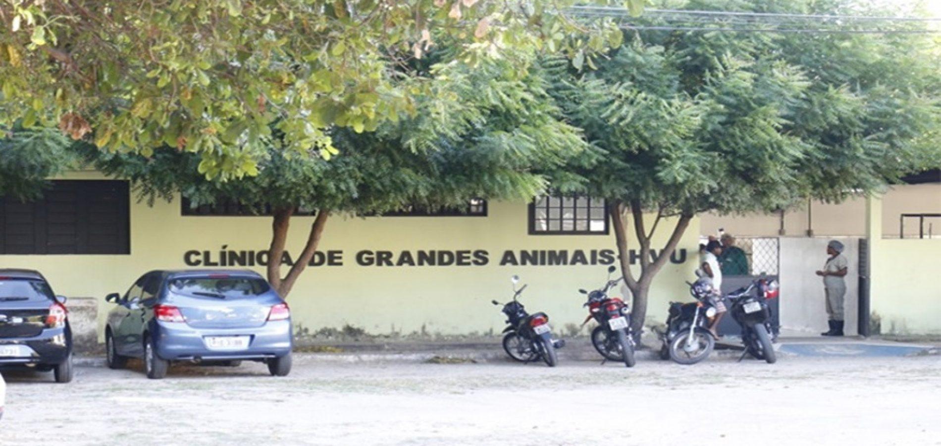 Adapi interdita parte do Hospital Veterinário ao descobrir doença contagiosa