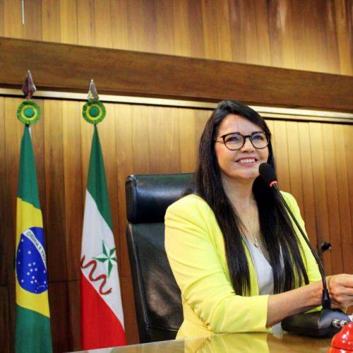 Deputada Teresa Britto é recordista de proposições no primeiro semestre na Assembleia Legislativa