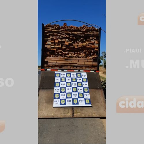 Caminhão com madeira ilegal avaliada em R$ 26 mil é apreendido no Piauí