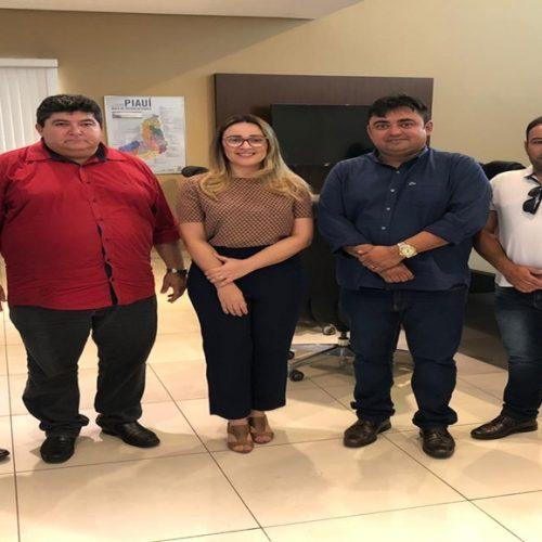 ALEGRETE│Prefeito Márcio Alencar e lideranças políticas se reúnem com a deputada Rejane Dias em Teresina