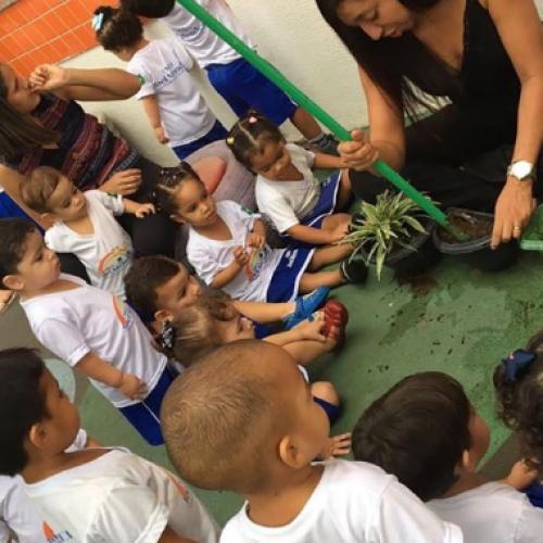 Piauí tem segundo maior progresso em educação do Brasil