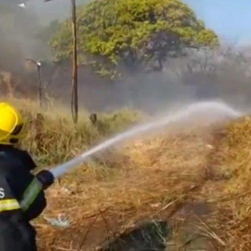 Incêndio em vegetação atinge acostamento no Sul do Piauí e preocupa condutores