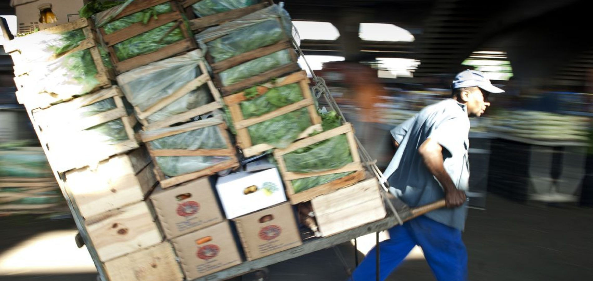 Governo estima valor bruto da produção agropecuária em R$ 603 bilhões