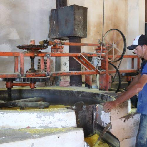 MPT fiscaliza casas de farinha nos estados do Piauí e Pernambuco