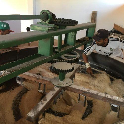Farinhadas se espalham pelo Piauí e mostram impacto econômico