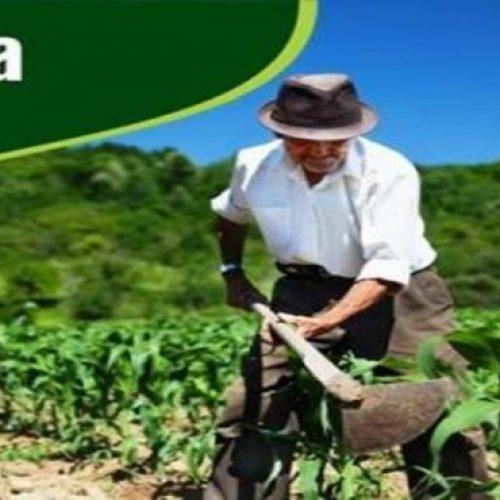 No Piauí, municípios que aderiram ao Garantia-Safra tem pagamento autorizado; veja quais