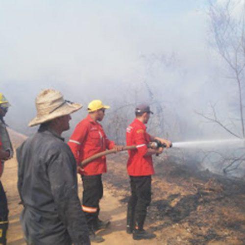 IBAMA vai contratar brigadas contra incêndios no Piauí