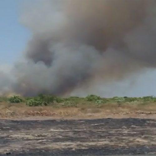 PIO IX | Incêndio continua a ameaçar plantações e residências