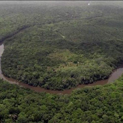 Bolsonaro diz que Brasil não precisa de dinheiro da Alemanha para preservar Amazônia