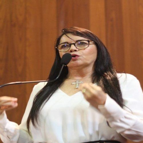 Deputada estadual Teresa Britto irá visitar municípios da região de Picos nesta terça e quarta