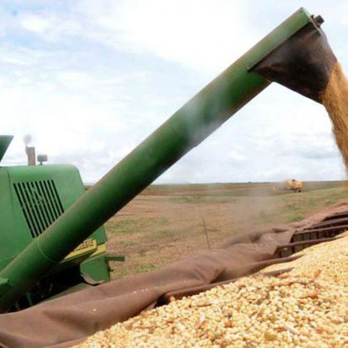 Produção de grãos na safra 2019/20 deve ser 8,8% maior, diz Conab