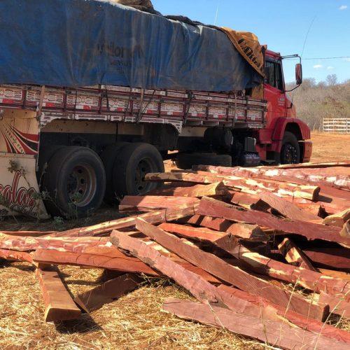 Polícia prende duas pessoas suspeitas de extração ilegal de madeira no Sul do Piauí