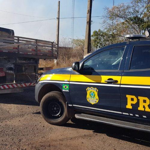 PICOS | PRF prende proprietário de veículo por uso de documento falso na BR-316