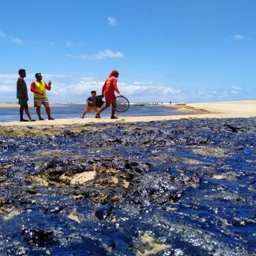 Organizações pedem o fim do sigilo nas ações em relação às manchas de óleo