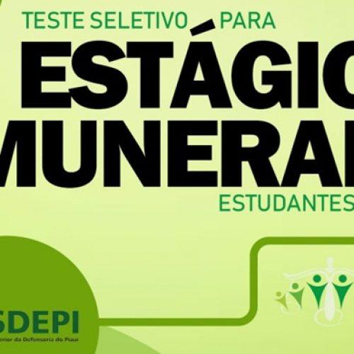 Esdepi divulga edital de Teste Seletivo para estágio remunerado na Defensoria Pública em 32 municípios do PI