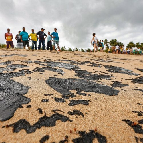 Pesca de camarão e lagosta será proibida a partir de 1º de novembro por 'provável contaminação por óleo no Nordeste