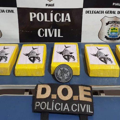 Polícia Civil apreende cerca de 100 mil reais em tabletes de cocaína na zona rural de Picos