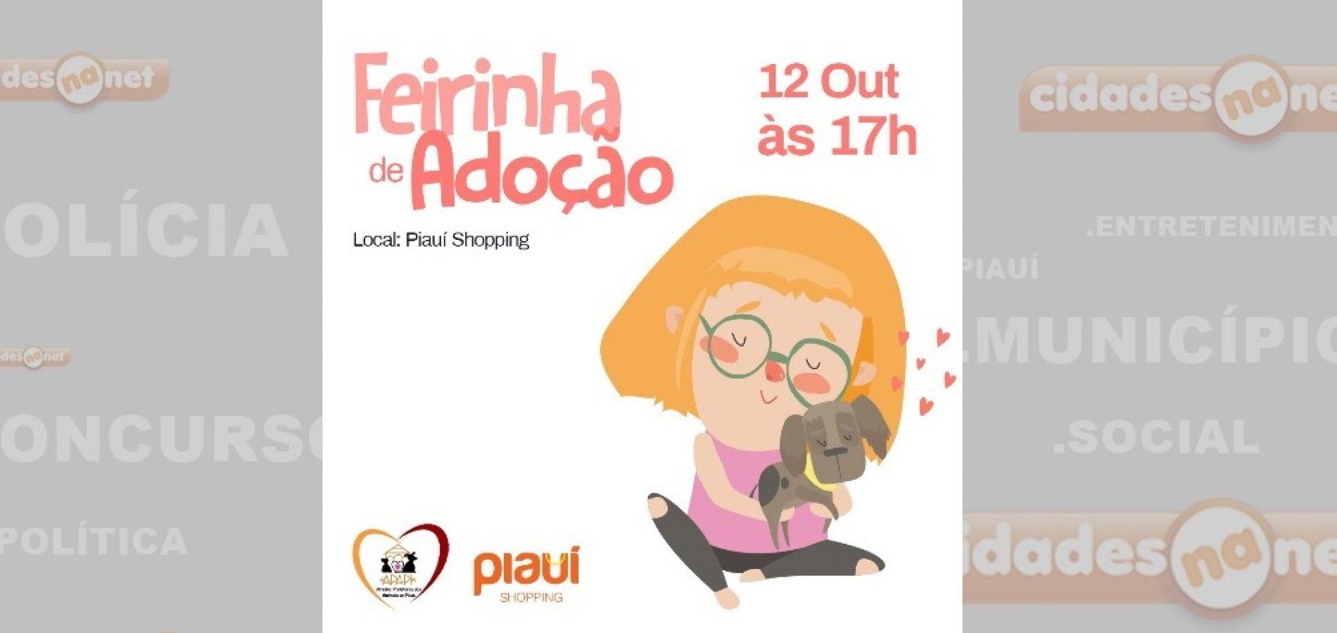 PICOS   APAPI promoverá Feirinha de Adoção de animais no próximo sábado, 12