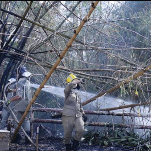 Incêndio destrói quiosque em frente a shopping no Piauí