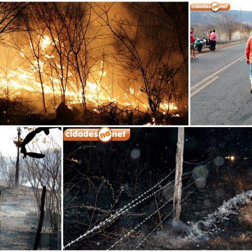 ´Enquanto houver fogo estaremos combatendo`, diz secretário Netinho sobre incêndio em Santana; veja fotos