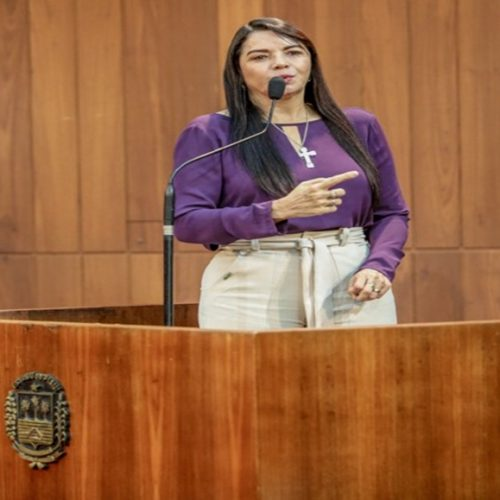 Deputada estadual Teresa Britto repercute caso de paciente renal que perdeu transplante