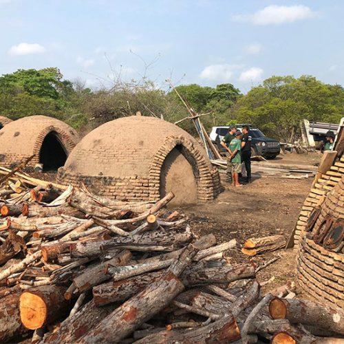 Carvoaria clandestina é destruída pela polícia no Piauí