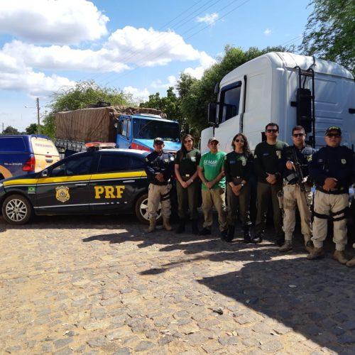 PRF realiza operação e prende 20 pessoas por uso de documento falso no PI