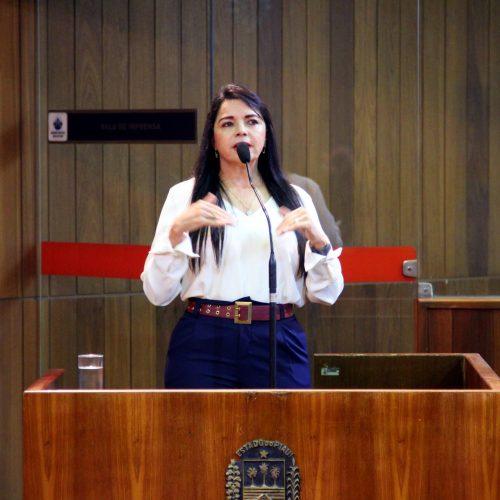 Teresa Britto fecha o ano de 2019 como recordista de proposições na Assembleia Legislativa
