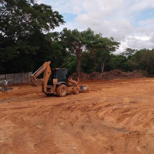 Piauí terá Parque Floresta Fóssil e Museu de Paleontologia