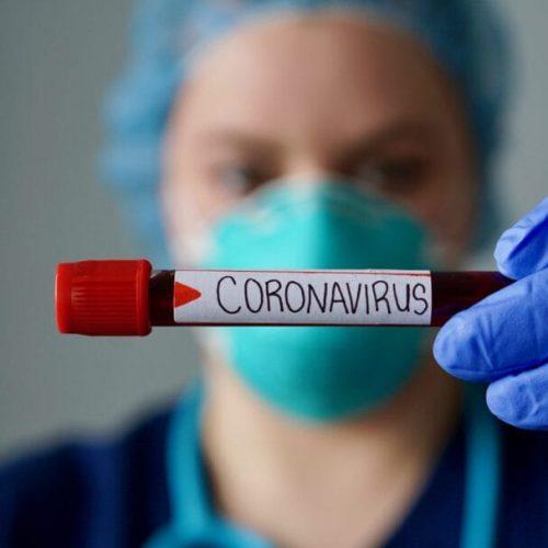 Pesquisa com brasileiros ajuda a entender origem do novo coronavírus