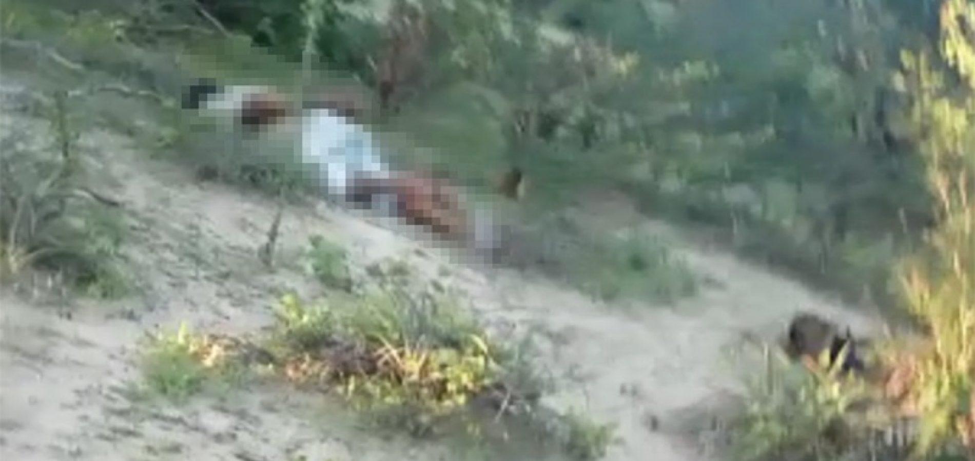 Três pessoas são encontradas mortas com sinais de tortura na divisa do Piauí e Bahia