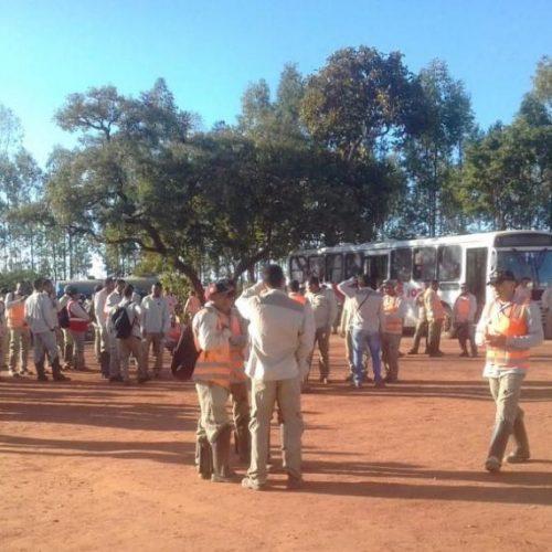 Funcionários de Usina Solar paralisam atividades no Piauí