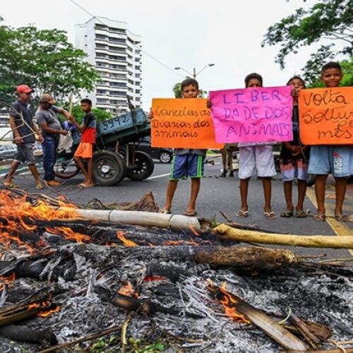 Carroceiros queimam pneus e bloqueiam avenida em cidade do Piauí